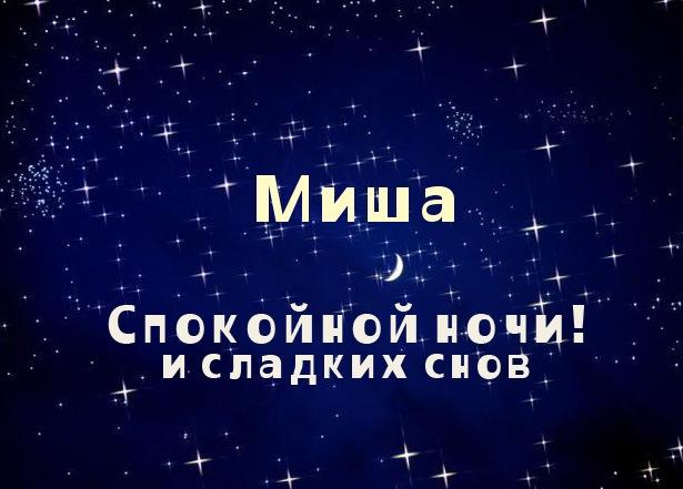 Миша, спокойной ночи и сладких снов
